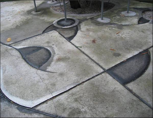 Photograph - Garden Floor 1992 by Glenn Bautista