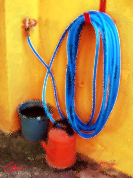 Photograph - Garden Hose Work by Colette V Hera  Guggenheim