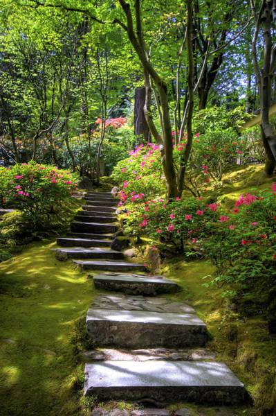 Photograph - Garden Path by Brad Granger