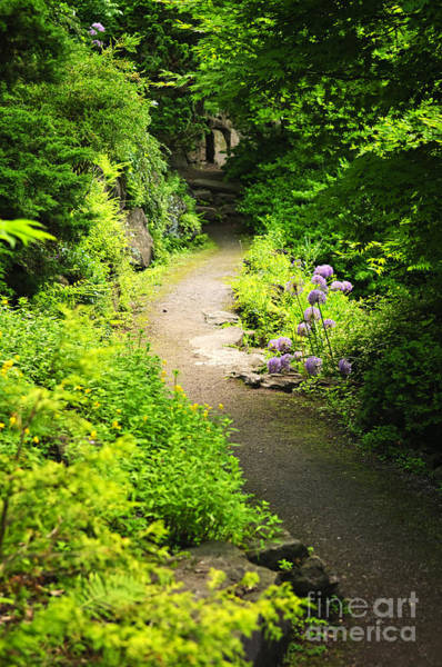 Photograph - Garden Path by Elena Elisseeva