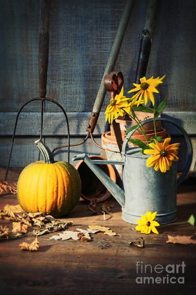 Photograph - Garden Shed With Tools  Pumpkin And Flowers by Sandra Cunningham