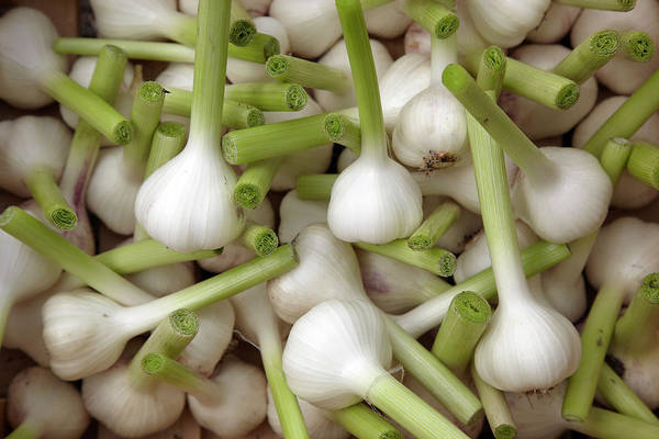 Repetition Photograph - Garlic Bulbs by Laurence Delderfield