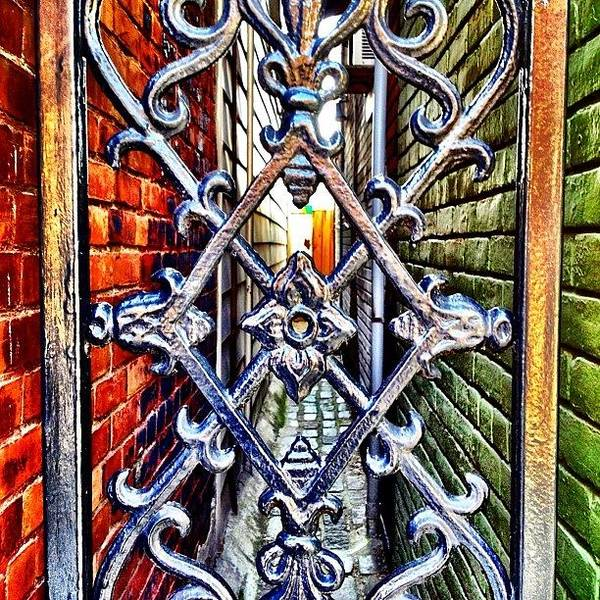 Wall Art - Photograph - Gate by Christopher Campbell