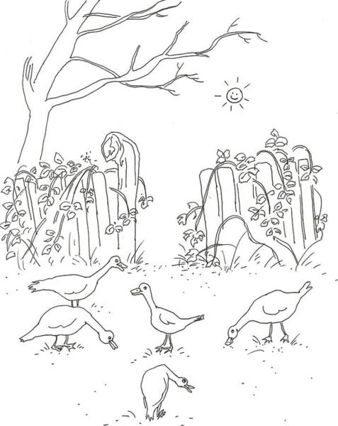 White Goose Drawing - Geese In The Garden by Vass Eva Rozsa