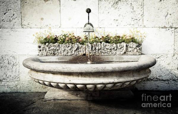Geneva Fountain 2 Art Print