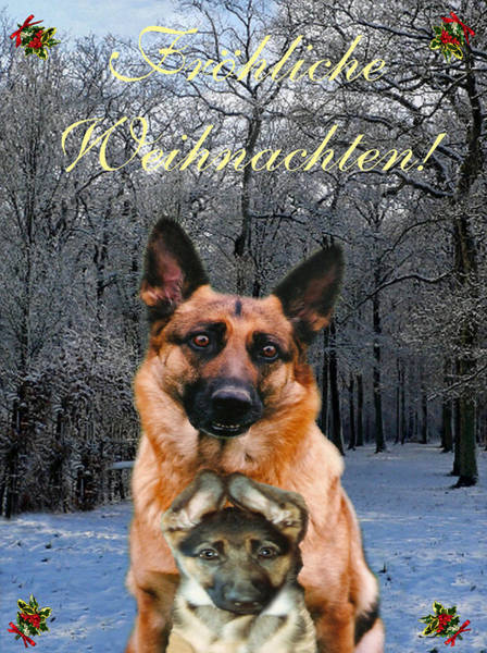 Holiday Cottage Mixed Media - German Card Holiday German Shepherd And Puppy by Eric Kempson