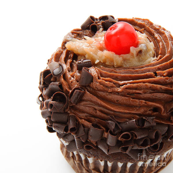 Photograph - German Chocolate Cupcake 4 by Andee Design