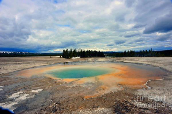 Photograph - Geyser At Yellowstone by Dan Friend