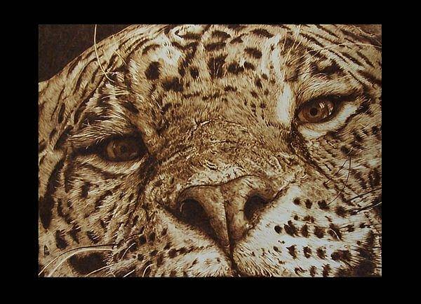 Pirografia Wall Art - Pyrography - Giaguaro by Davide Della Noce