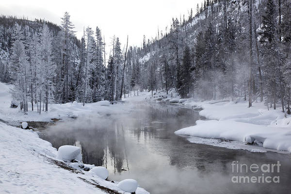 Photograph - Gibbon River With Mist by Greg Dimijian
