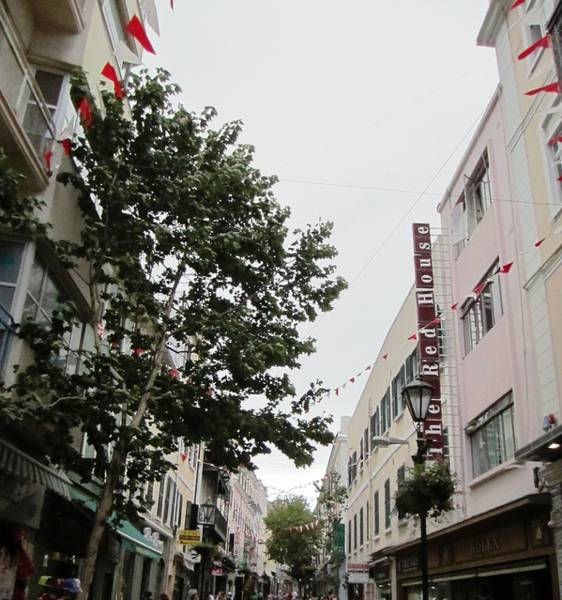 Photograph - Gibraltar Promenade And Shops Iv Uk Territory by John Shiron