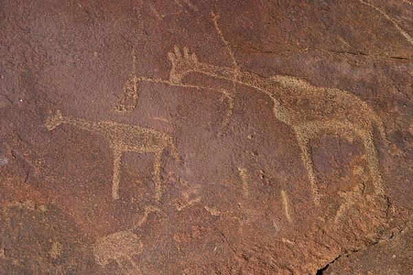 Giraffe Petroglyphs Namibia Art Print