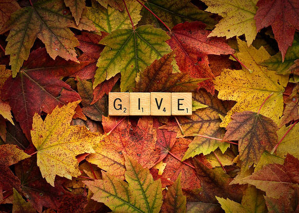 Photograph - Give-autumn by  Onyonet  Photo Studios