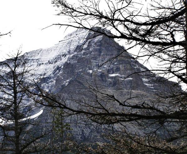 Photograph - Glacier Peak by Susan Kinney