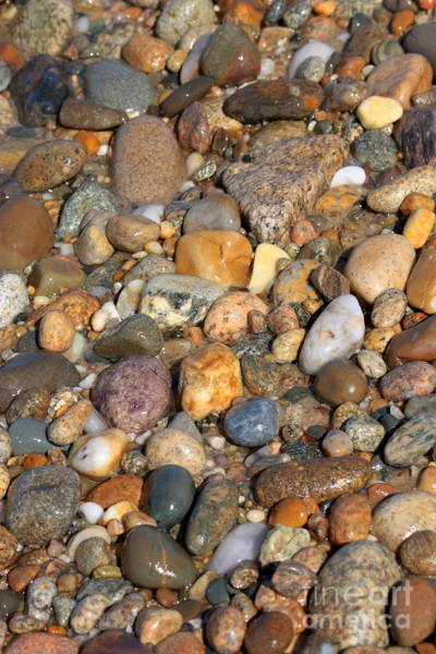 Photograph - Glistening Rocks On The Beach by Carol Groenen