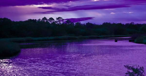 Ormond Photograph - Glittery Sunset by DigiArt Diaries by Vicky B Fuller
