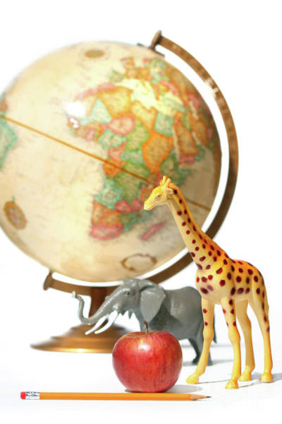North Africa Wall Art - Photograph - Globe With Toys Animals On White by Sandra Cunningham