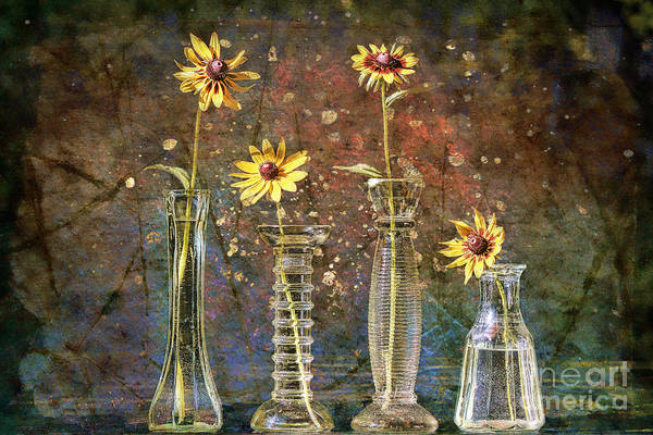 Flowers In A Vase Photograph - Glorious Gloriosas by Sari Sauls