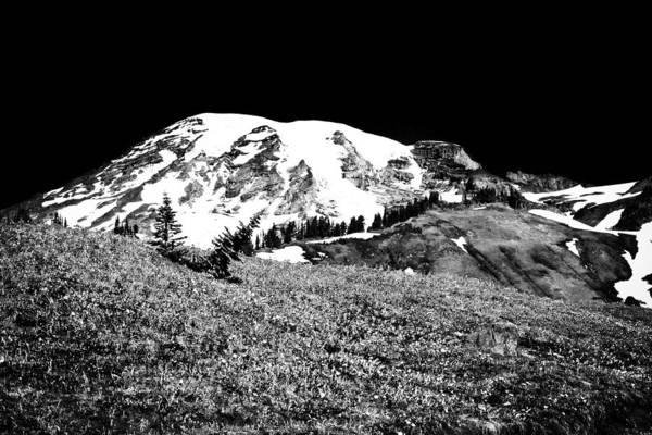 Photograph - Glorious Mount Rainier  by David Patterson
