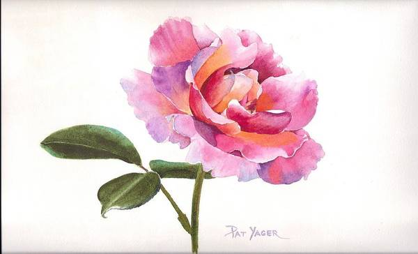 Wall Art - Painting - Glowing Rose by Pat Yager