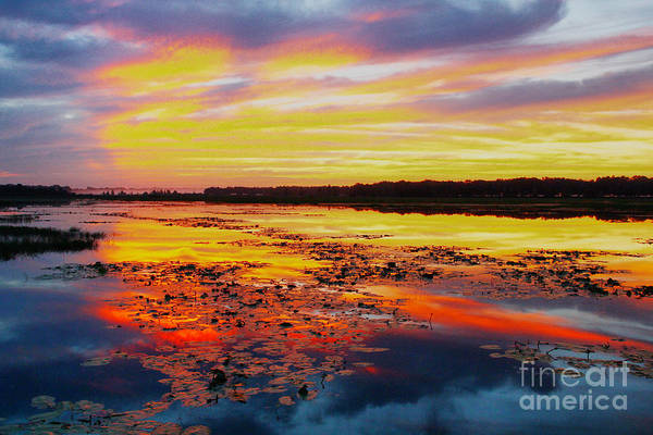 Photograph - Glowing Skies Over Crews Lake by Barbara Bowen