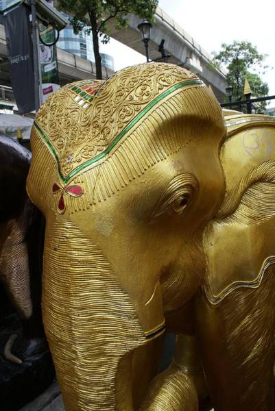 Phra Phrom Photograph - Gold Elephant by Gregory Smith