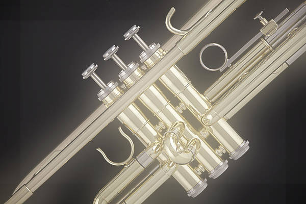 Photograph - Gold Trumpet On Black by M K Miller