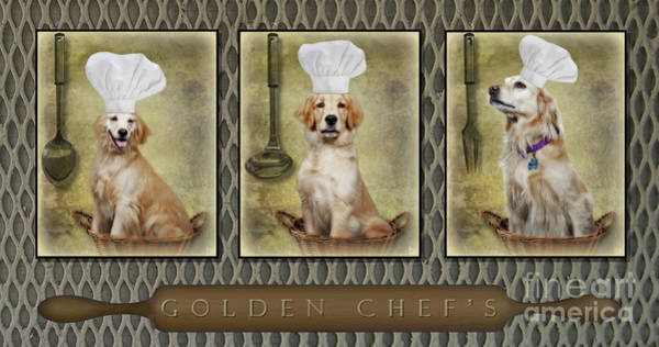 Photograph - Golden Chef's by Susan Candelario