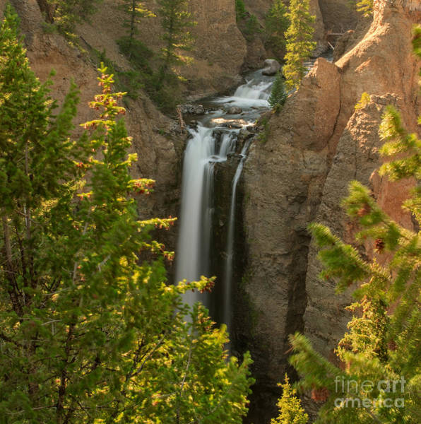 Photograph - Golden Light On Tower Falls by Charles Kozierok