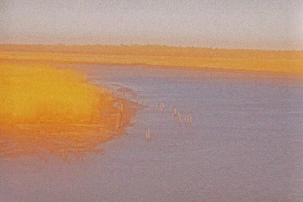 Photograph - Golden Marsh by Tom Singleton