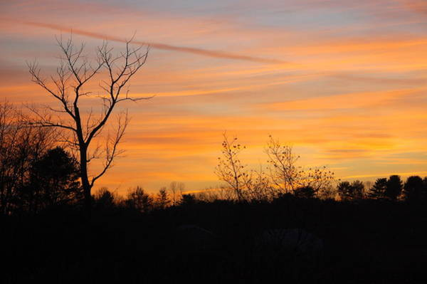 Photograph - Golden Sky by Mary McAvoy