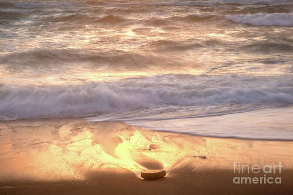 Photograph - Golden Waves by Susan Cole Kelly