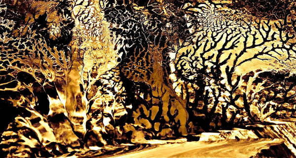 Golden Wonderland Art Print by Gloria Warren