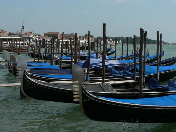 Photograph - Gondolas by Laurel Best