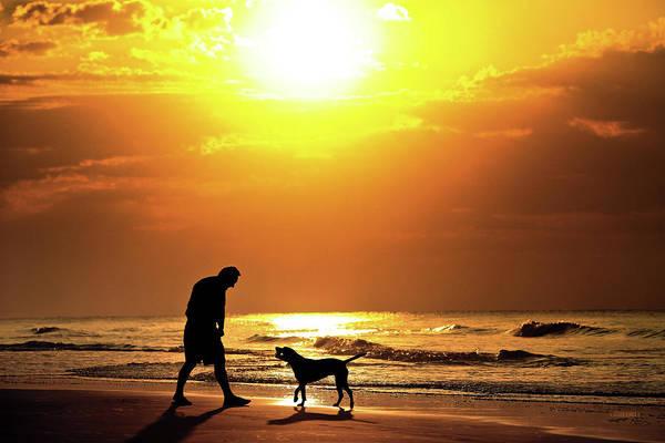 Fetch Photograph - Good Boy by Steven Llorca