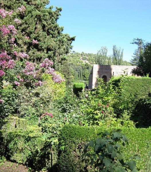 Photograph - Gorgeous Spanish Garden Granada Spain by John Shiron