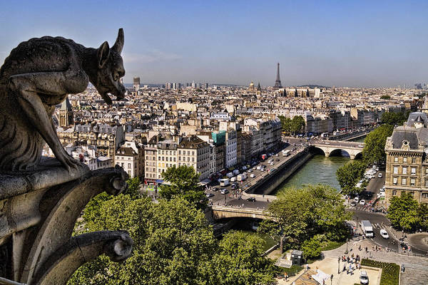 Photograph - Gorgyle View Of Paris by Wes and Dotty Weber