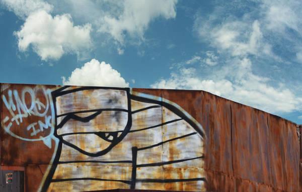 Wall Art - Photograph - Graffiti Monster by Nikki Marie Smith