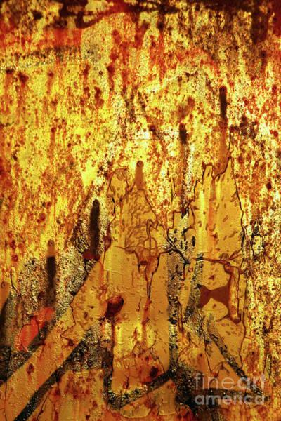 Airbrushed Wall Art - Photograph - Grafitti Detail by Carlos Caetano