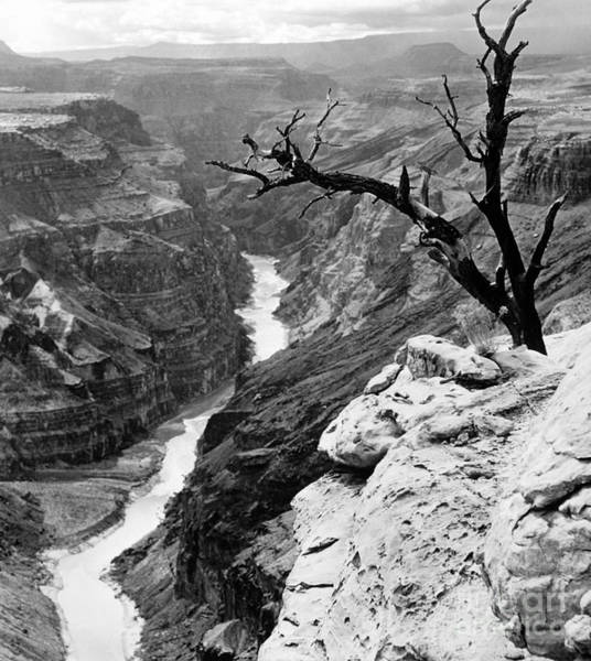 Photograph - Grand Canyon, 1958 by Granger