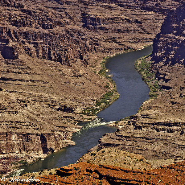 Photograph - Grand Canyon Colorado River by Bob and Nadine Johnston