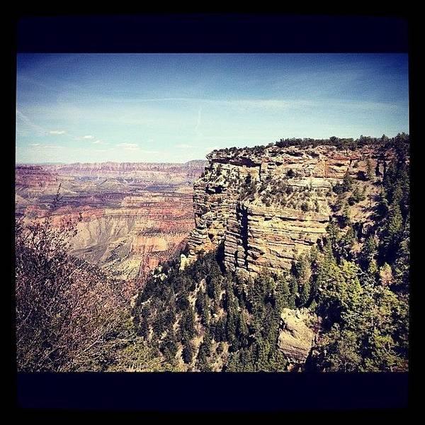 Vivid Wall Art - Photograph - Grand Canyon by Isabel Poulin