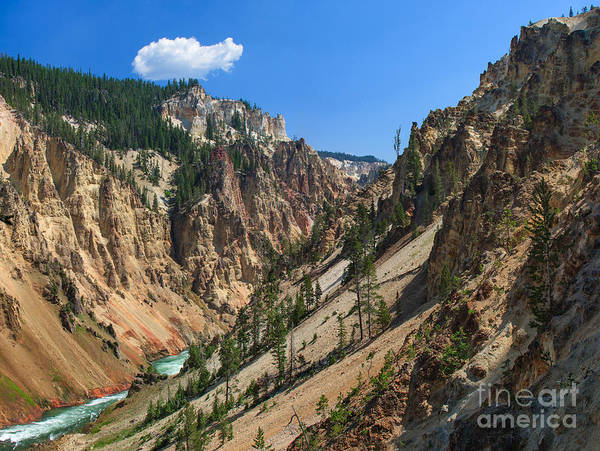 Photograph - Grand Canyon Of The Yellowstone by Charles Kozierok