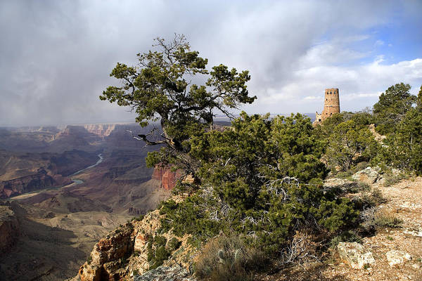 Desert View Tower Photograph - Grand Canyon Tower by Dewain Maney