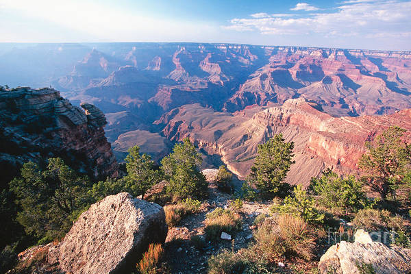 George Canyon Photograph - Grand Canyon Vista by George Oze