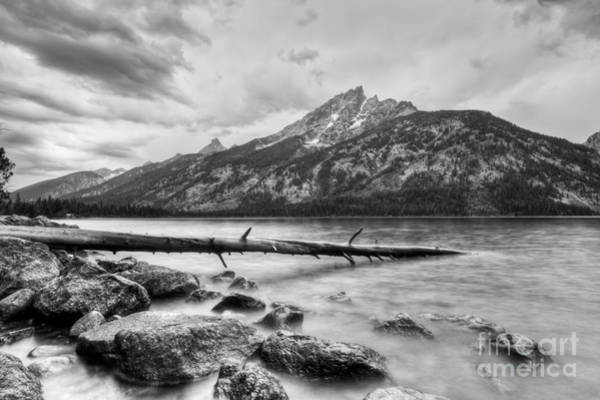 Wall Art - Photograph - Grand Tetons Above Jenny Lake Jackson Hole by Dustin K Ryan