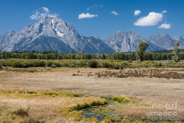 Photograph - Grand Tetons Late Summer 2012 by Katie LaSalle-Lowery