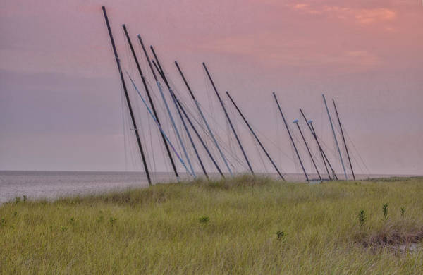 Photograph - Grass And Masts by Tom Singleton