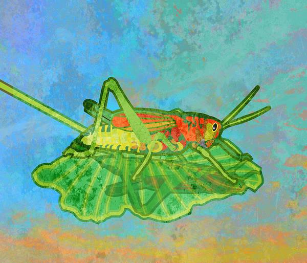 Blue Bug Digital Art - Grasshopper by Mary Ogle