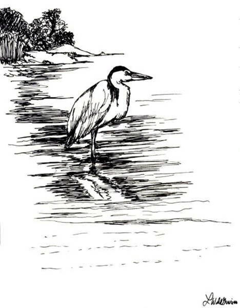 Great Blue Heron Drawing - Great Blue Heron by Lisa Guarino